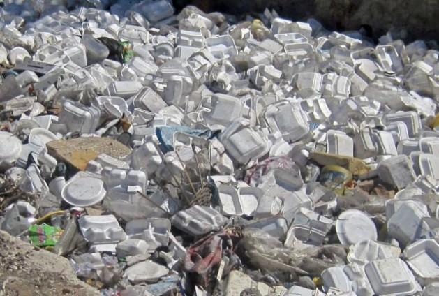 styrofoam640-629x424 2
